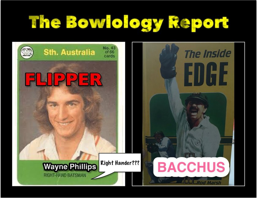 Flipper rod marsh